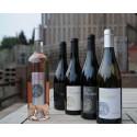 Les vins en Côtes du Rhône et en Cairanne du Domaine Clos Romane